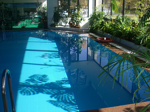Swimming Pools Help : Can you help save paul newman s life challenge solved