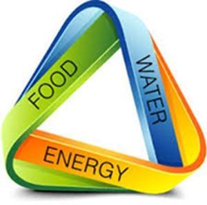 //blog.epa.gov/blog/tag/food-energy-water-nexus/