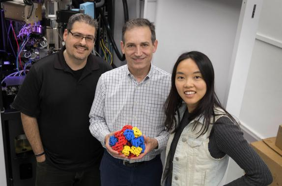 UCLA researchers Tamir Gonen, Todd Yeates, Yuxi Liu