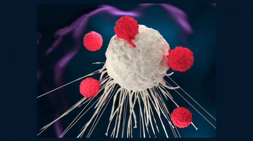 Chimeric antigen receptor (CAR) T-cell therapy uses T-cells gathered from the patient's own blood. The T-cells are engineered and then infused back into the patient to target and attack cancer cells.